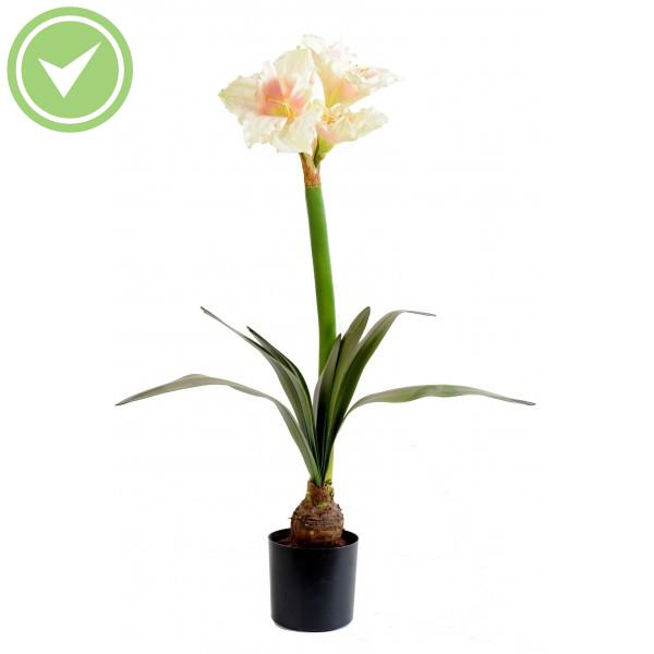 Amaryllis bulbe en pot 3fl 1bt plante artificielle fleurie for Fleurs a bulbe amaryllis