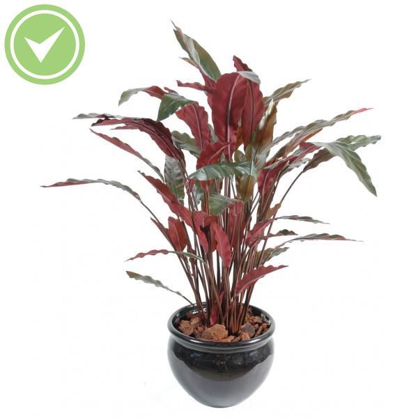 Calathea en pot plante verte artificielle maison et fleurs for Grandes plantes vertes