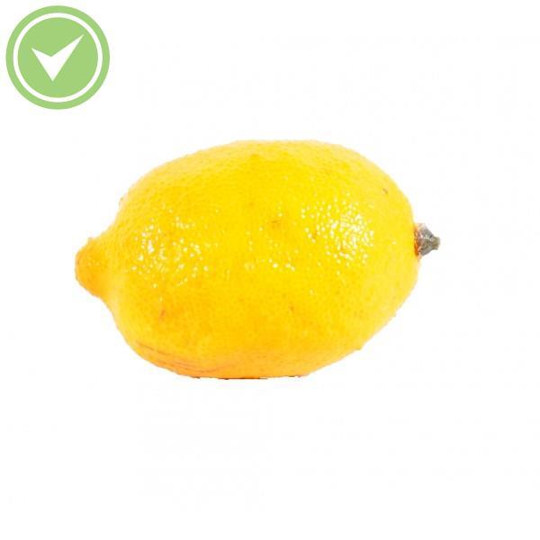 Citron Fruit artificiel