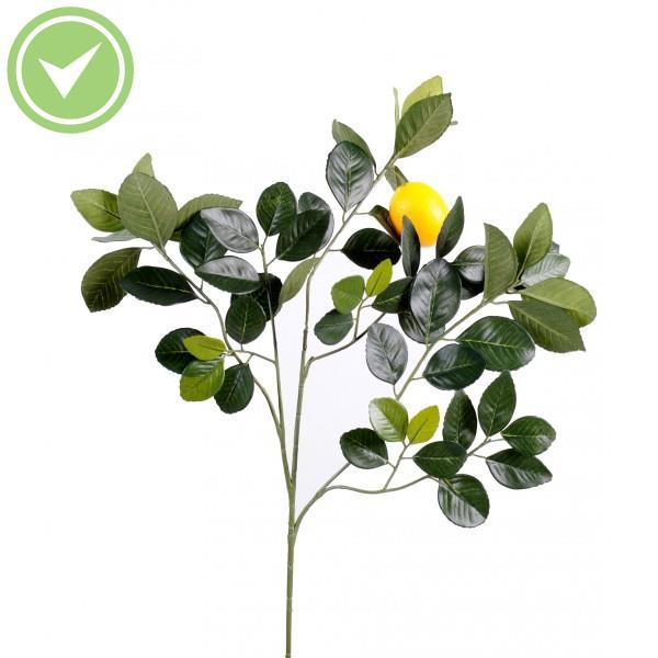 Engrais Naturel Pour Citronnier : citronnier golden spray et fruit m branchage artificielle maison et fleurs ~ Nature-et-papiers.com Idées de Décoration