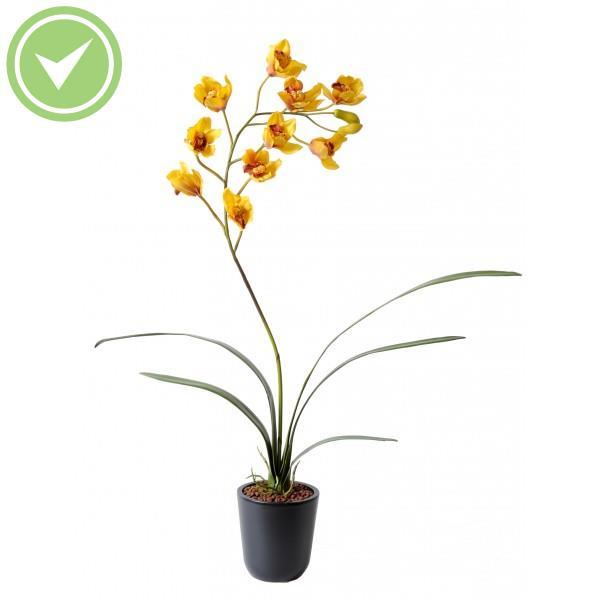 cymbidium orchid e artificielle maison et fleurs. Black Bedroom Furniture Sets. Home Design Ideas