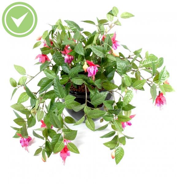 Geranium chute 136 plante retombante artificielle maison for Geranium d interieur