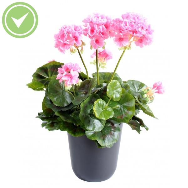 geranium lierre artificiel maison et fleurs. Black Bedroom Furniture Sets. Home Design Ideas