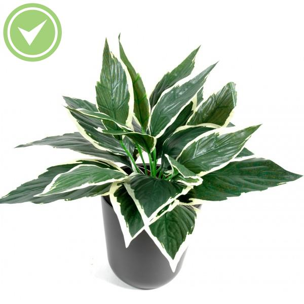 Mini plantes vertes interieur for Grossiste plantes artificielles
