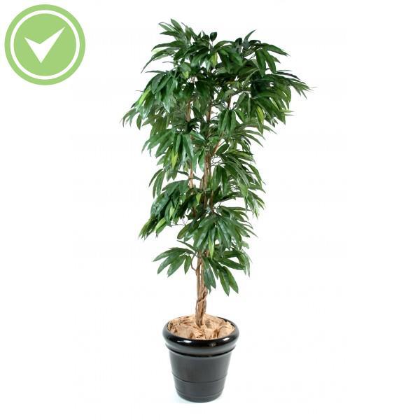manguier arbre artificiel - Arbuste Artificiel Exterieur Pas Cher