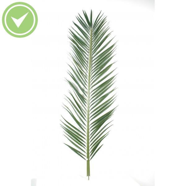 Feuille de palmier artificielle pas chere maison et fleurs - Feuille de palmier artificielle ...