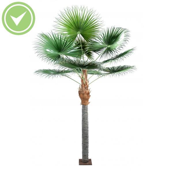Palmier camerus palmier artificiel maison et fleurs for Arbre palmier artificiel