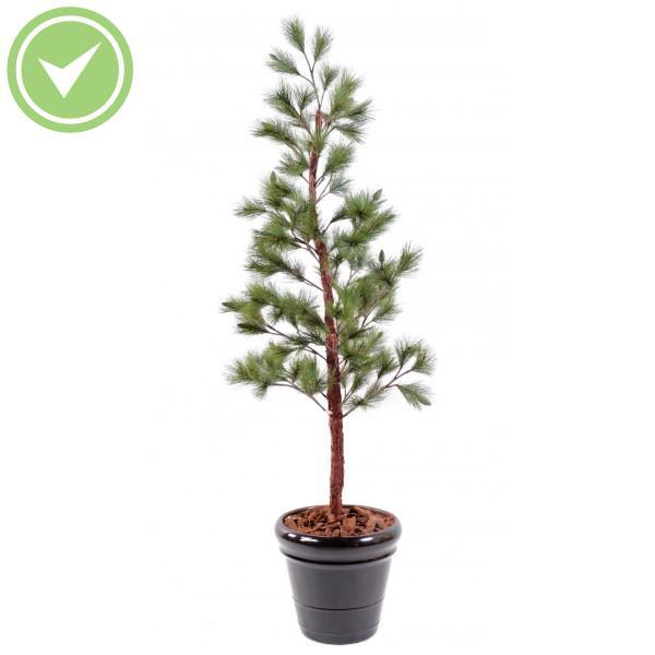 articles similaires arbuste artificiel exterieur - Arbuste Artificiel Exterieur Pas Cher