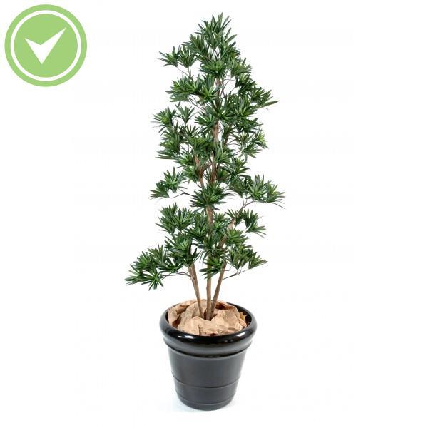 podocarpus nuage plante artificielle m diterran enne maison et fleurs. Black Bedroom Furniture Sets. Home Design Ideas